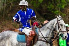 Polo Pony Rider Chukka Change Royalty Free Stock Photos