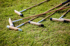 Polo Rackets. A set of Polo Rackets lying on the grass Royalty Free Stock Images