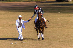 Polo Referee Rider Horse Play handling Arkivfoton