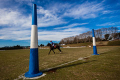 Polo Rider Goals Field Blue Stock Photos