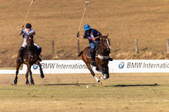 Polo Rider Horse Play Action Royaltyfria Bilder