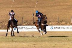 Polo Rider Horse Play Action Immagini Stock Libere da Diritti