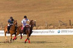 Polo Rider Horse Play Action Fotografia Stock