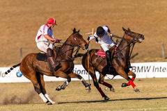 Polo Rider Horse Play Action Immagine Stock