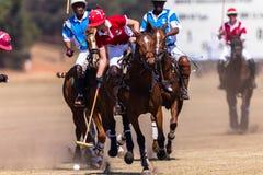 Polo Rider Horse Play Action Fotografering för Bildbyråer