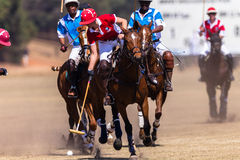 Polo Girl Rider Horse Play Action. Polo Players girl boys and horse ponies in action with games at Shongweni equestrian grounds Hillcrest outside Durban in South Stock Image