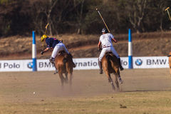 Polo Rider Horse Play Action Stock Image