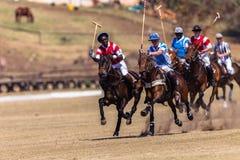 Polo Riders Horses Play Action Royaltyfri Fotografi