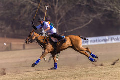 Polo Riders Horses Play Action Fotografia Stock Libera da Diritti