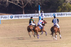 Polo Riders Horses Play Action Immagine Stock
