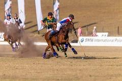 Polo Riders Horses Play Action Immagine Stock Libera da Diritti