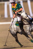 Polo Riders Horses Play Action Royaltyfri Bild
