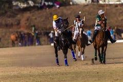 Polo Riders Horses Play Action Immagini Stock Libere da Diritti