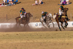Polo Riders Horses Play Action Immagini Stock