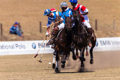 Polo Riders Horses Play Action. Polo Players and horse ponies in action with games at Shongweni equestrian grounds Hillcrest outside Durban in South Africa Stock Photography