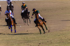 Polo Riders Horses Play Action Royalty Free Stock Images