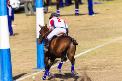 Polo Riders Horses Play Action. Polo Players and horse ponies in action with USA plays South Africa games at Shongweni equestrian grounds Hillcrest outside Stock Photography
