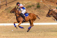 Polo Riders Horses Play Action. Polo Players and horse ponies in action with USA plays South Africa games at Shongweni equestrian grounds Hillcrest outside Royalty Free Stock Photography