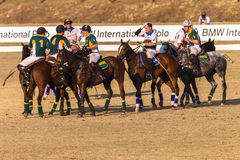 Polo Riders Horses Play Action Stock Images