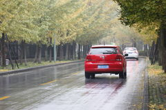 An POLO running along  Ginkgo Road in Jiaxing City Stock Photo