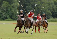 Polo Sports. This photo shows a Polo match between two teams in Düsseldorf Germany. The majority of Polo players in Germany originate from South America, in Royalty Free Stock Photo