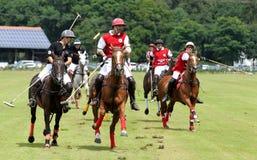Polo Sports Stock Photo