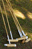 Polo sticks Royalty Free Stock Image