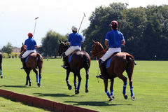 Polo team line-up Stock Photo