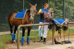 Poloausrüstung Mann, der ein Polopferd sattelt Stockfotos