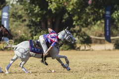 PoloCrosse Action United Kingdom stock image