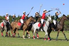 Polocrosse drużyny * Obraz Royalty Free