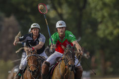 Polocrosse Equestrian Riders Action Royalty Free Stock Image