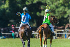 Polocrosse Horses Players Stock Photo