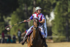 PoloCrosse Player Horse Action Stock Image