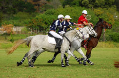 Polocrosse players on their horses Royalty Free Stock Photos