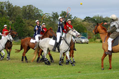 Polocrosse players on their horses Stock Image