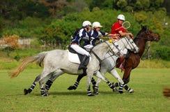 Polocrosse Spieler auf ihren Pferden Lizenzfreie Stockfotos