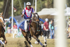PoloCrosse World-Cup Equestrian Action royalty free stock images