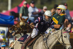 PoloCrosse World-Cup Equestrian Action Stock Images
