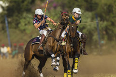 PoloCrosse World-Cup Equestrian Action Royalty Free Stock Photo