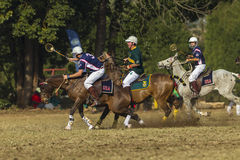 PoloCrosse World-Cup Horse Slips Action Royalty Free Stock Image