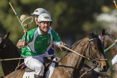 PoloCrosse World-Cup Horses Ireland Royalty Free Stock Photo