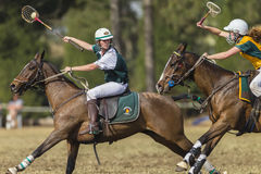 PoloCrosse World-Cup Player Action royalty free stock images