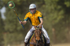 PoloCrosse World-Cup Players Action stock photography