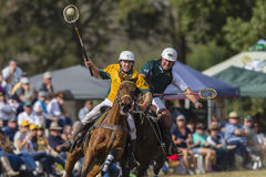 PoloCrosse World-Cup Players Action Stock Images