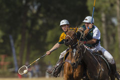 PoloCrosse World-Cup Players Action Royalty Free Stock Image