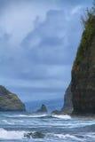 Pololu Dolinny widok w Dużej wyspie Zdjęcia Royalty Free
