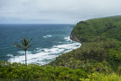 Pololu Valley Shore Stock Image