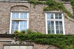 Polonia. Ciudad de Gdansk. Windows Foto de archivo libre de regalías