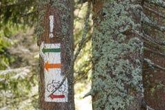 Polonia, montañas de Gorce, marcas ardientes del rastro Foto de archivo libre de regalías
